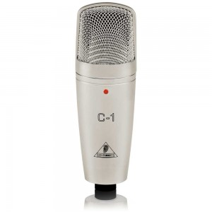 The cheapest, worth looking at microphone for recording