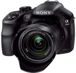 Sony's other mirrorless camera under 500 bucks
