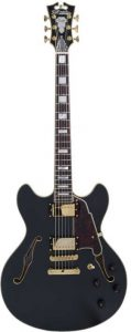 A highly rated semi-hollow model here