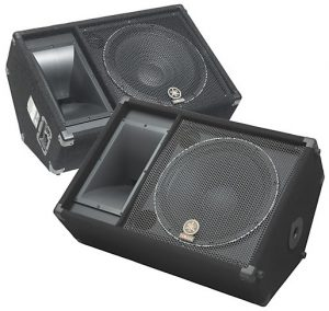 A less expensive pair of speakers for live performances