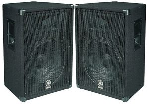 Another one of our favorite loudspeaker pairs to buy for your live performances
