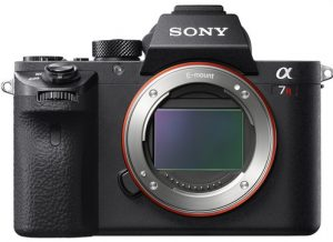 Mirrorless cameras are another technologically advanced video camera type