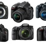 The Top 10 Best DSLR Cameras for Beginners