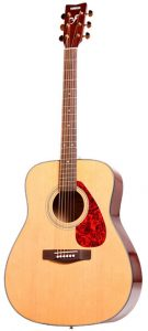 A beautiful acoustic guitar to start with