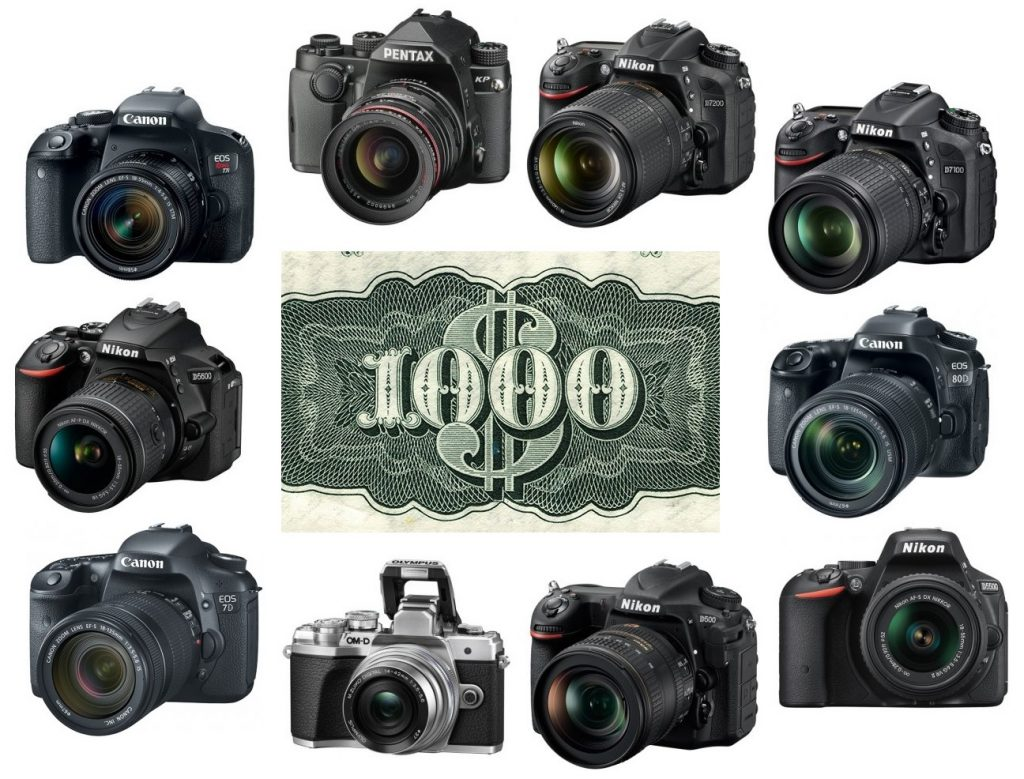 We found our favorite DSLR cameras for budgets of $1,000 or less