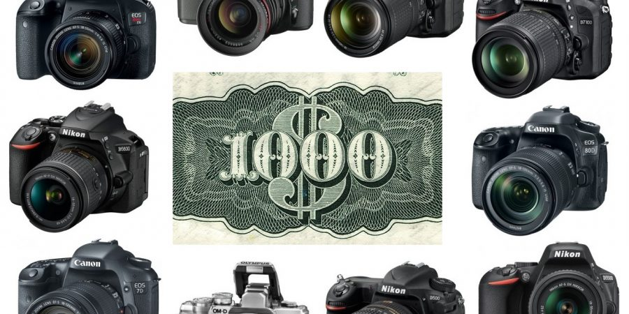 The Best DSLR Cameras for an Under $1,000 Budget