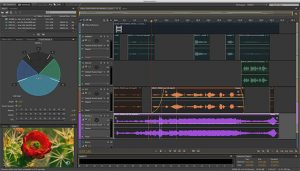 Others may consider this the best podcast software